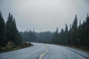 Road trip on highway with blizzard in coniferous forest at Banff national park photo