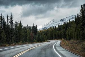 Asphalt highway in autumn forest on gloomy day at Banff national park photo