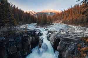 Sunwapta Falls is pair of the Sunwapta river in autumn forest at sunset. Icefields Parkway, Jasper national park photo