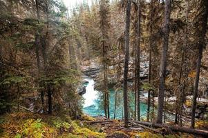 Johnston canyon waterfall flowing in autumn forest at Banff national park photo