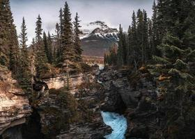 Athabasca Falls flowing in canyon with rocky mountains in autumn forest at Jasper national park photo