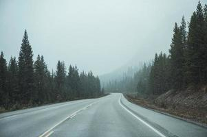 Road trip of car driving on highway with blizzard in pine forest photo