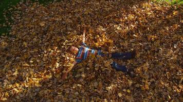 Young boy playing in fall leaves. Shot on RED EPIC for high quality 4K, UHD, Ultra HD resolution. video