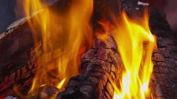 Outdoor fire. Shot on RED EPIC for high quality 4K, UHD, Ultra HD resolution. video