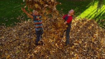 Children playing in fall leaves. Shot on RED EPIC for high quality 4K, UHD, Ultra HD resolution. video