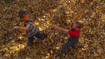 Two young boys playing in fall leaves. Shot on RED EPIC for high quality 4K, UHD, Ultra HD resolution. video