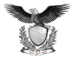 Eagle and shield emblem design hand draw vintage engraving style vector
