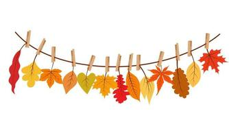 Autumn leaves hanging on the rope attached with clothespin. vector
