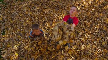 Boys throwing fall leaves. Shot on RED EPIC for high quality 4K, UHD, Ultra HD resolution. video