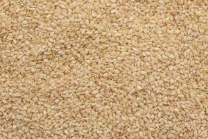 Sesame close up. It can be used as a background photo