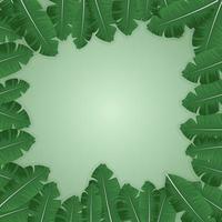 Fondo cuadrado rodeado de hojas verdes frescas y vacío. vector