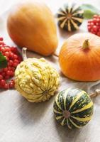 Autumn composition,  cozy fall season,  pumpkins and leaves on textile background. photo
