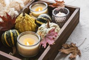 Autumn composition with assorted pumpkins photo