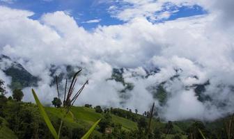 fog and cloud landscape in rainy season beautiful natural scenery photo