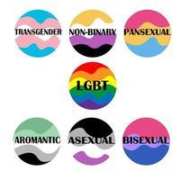 banderas de orgullo por la identidad sexual. colección de iconos del desfile del orgullo. vector. género bandera transgénero, no binario, pansexual, lgbt, aromático, asexual, bisexual. infografías de diversidad sexual. vector