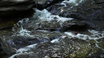 flux d'eau sur les rochers dans un parc naturel. video