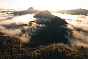 montañas y niebla matutina en el bosque tropical foto