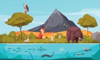 Biological Hierarchy Cartoon Background vector