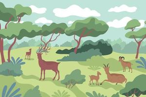 Forest Wild Life Composition vector