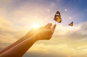 The girl frees the butterfly from  moment Concept of freedom photo