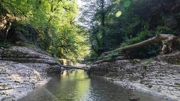 hermoso bosque y río de montaña en el cañón de psakho, krasnodar krai, rusia. foto