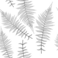Fern Leaf Vector Fern Leaf Seamless Pattern Background