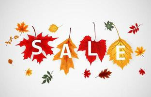 Abstract Autumn Sale Background with Falling Autumn Leaves vector