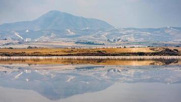 Larnaca salt lake with flamingos on background, Cyprus photo