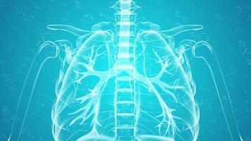 infographie animée concept recherche médicale video