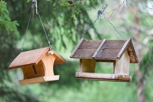 birdhouse in outdoor photo