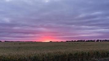 Beautiful sunset over the field. Blagoveshenskaya, Russia. photo