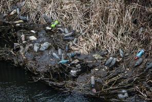 Waste plastic bottles photo