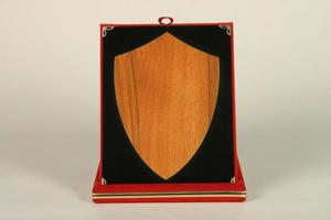 Award or souvenir made of brass metal in a wooden box covered with red velvet. photo