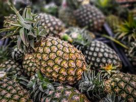 A lot of pineapple fruit background, tropical fruits on sale photo