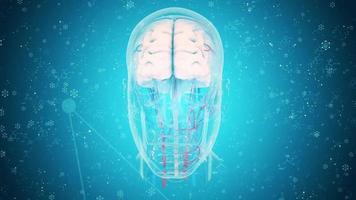 graphiques animés de recherche médicale concept video