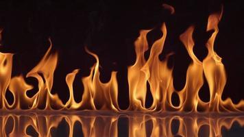 Flames burning on black background in slow motion shot on Phantom Flex 4K at 1000 fps video