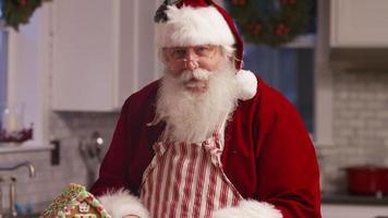 porträtt av jultomten i köket video