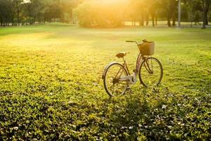 Beautiful vintage bicycle in park with sunlight photo