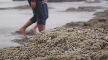 couple marchant ensemble à la plage. tourné sur red epic pour une résolution 4k, uhd, ultra hd de haute qualité. video