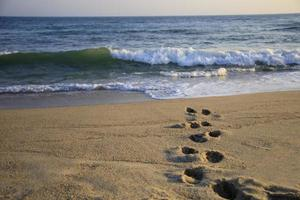 Footprints on a beach leading to the waves photo