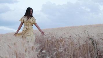 framifrån av en kvinna som vidrör vete med handen medan hon går genom fältet. video