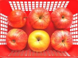 manzanas rojas en una canasta foto