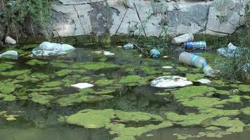 Stream Water Garbage video