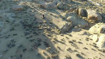 Aerial shot of a young man backpacking with his dog in a mountainous desert. video