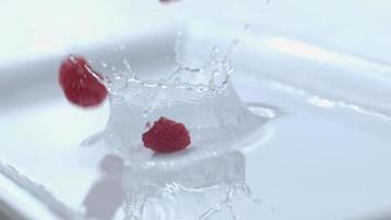Raspberries splashing in slow motion. shot on Phantom Flex 4K at 1000 fps video