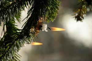Burning Wax Candles. Christmas Green Tree And Candlelight. photo