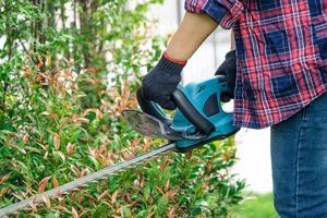 Gardener holding electric hedge trimmer to cut the treetop in garden photo