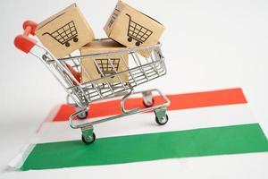 caja con el logotipo del carrito de la compra y la bandera de Hungría, importación, exportación, compras en línea o comercio electrónico, servicio de entrega de finanzas, tienda, envío de productos, comercio, concepto de proveedor foto