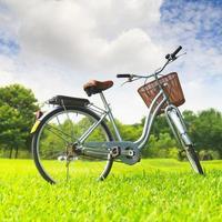 bicicletas en el parque foto