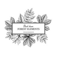 Hand drawn autumn botanical frame with falling leaves. Vector illustration in sketch style isolated on white. Realistic forest design elements Space for text